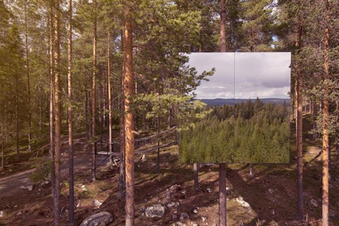 Зеркальный куб посреди леса.
