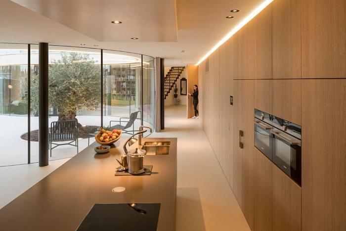 Кухня с видом на оливу.
