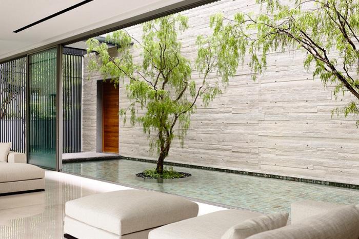 «66MRN House». Декоративный бассейн.