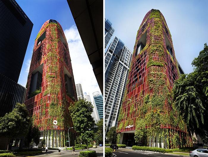 Оasia Hotel Downtown - проект отеля в Сингапуре.
