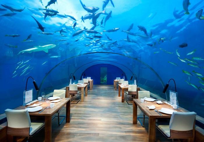 Ithaa - ресторан под водой.