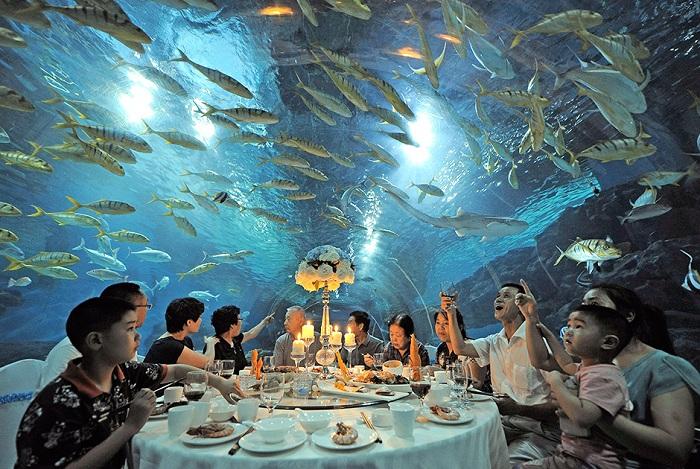 Ресторан под куполом океанариума Haichang Polar Ocean World.