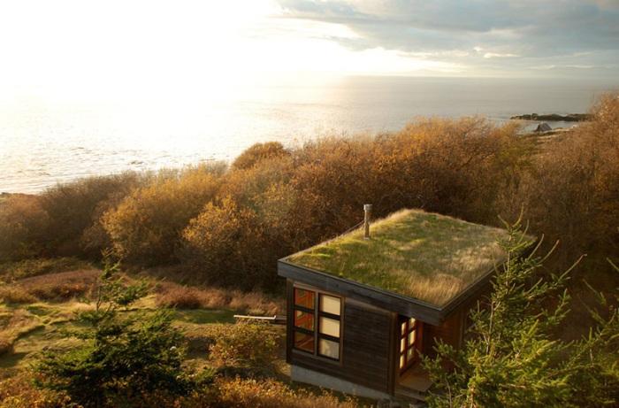 Eagle Point Cabin. «Зеленая» крыша как маскировка.