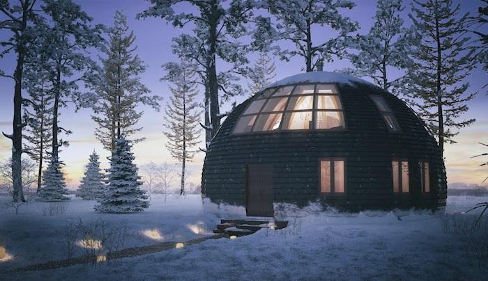 Дом в виде деревянной полусферы.