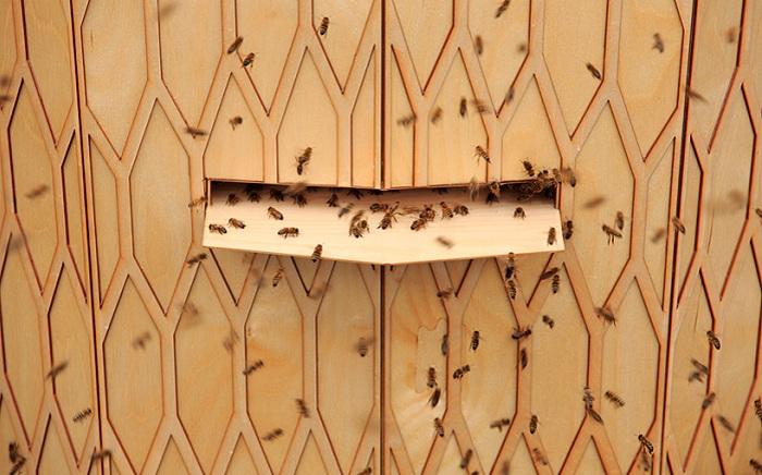 Специальное отверстие для пчел.