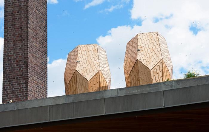 Проект норвежского архитектурного бюро Snohetta.