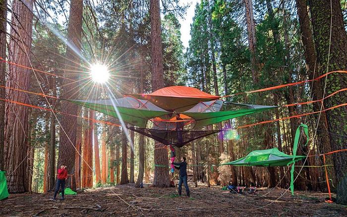 Многослойная палатка, подвешенная на дереве.