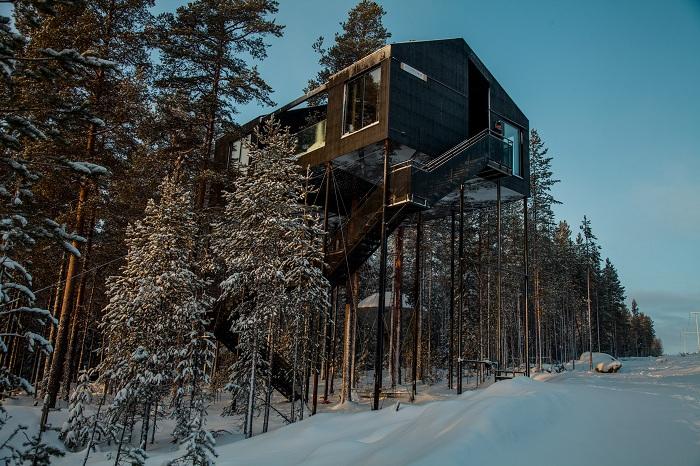 The 7th Room - отель в лесу.