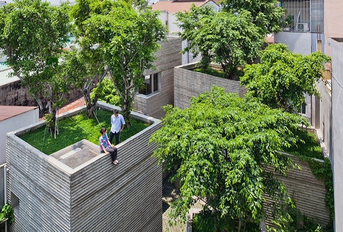 House for Trees - ����� �������� � ��������� �� ������.