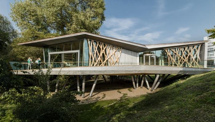Проект архитектурной фирмы Wilkinson Eyre Architects.