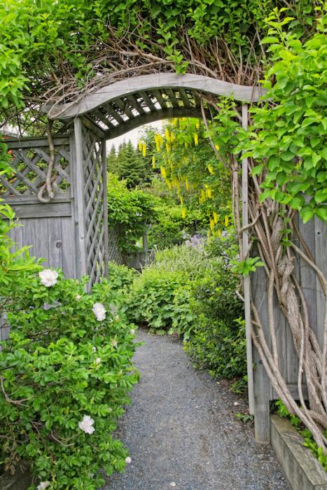 Деревянный свод, украшенный вьющимися многолетними растениями, может стать изюминкой любого садового участка.