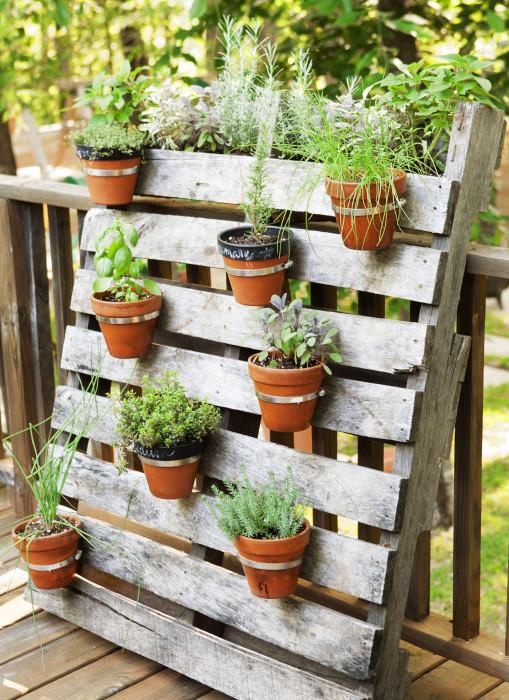 Вертикальная грядка из старого поддона - отличная возможность озеленить садовый участок даже в том случае, если для большого цветника нет места.