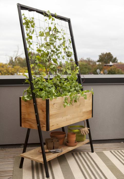 Небольшая мобильная грядка для вьющихся цветов и растений, сделанная из деревянных досок и металлических уголков.