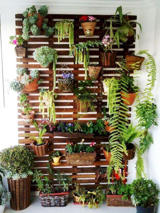 Вертикальное озеленение балкона - это отличный и современный способ наслаждаться ароматом растений круглый год.
