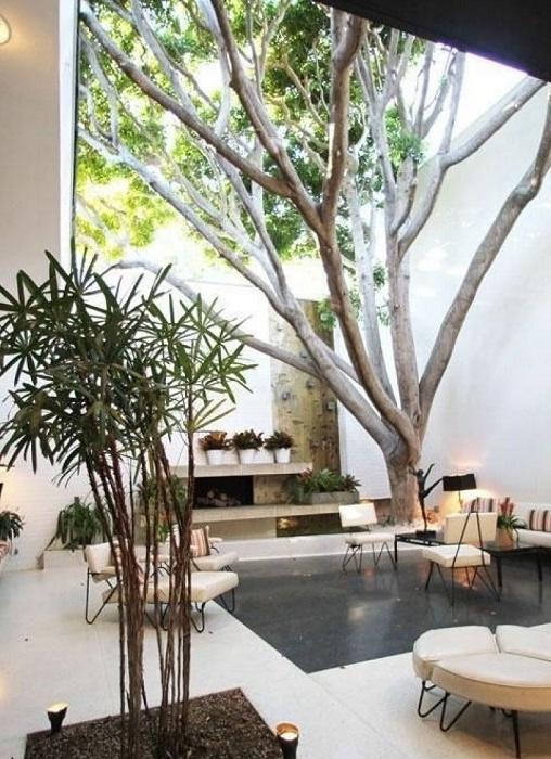 Восхитительная идея, которая поможет создать неповторимый райский уголок в собственном доме.