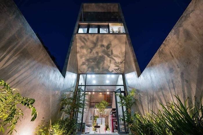 Комната, украшенная зелёными растениями и цветущими деревьями, заметно преобразит пространство и интерьер.