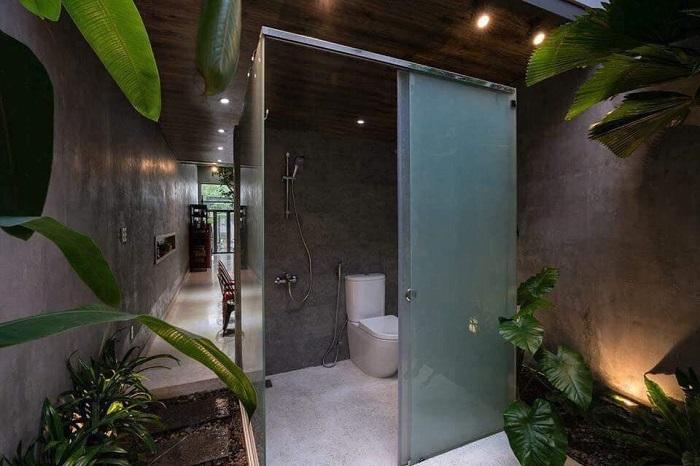Композиция из небольших растений идеально подходит для ванной комнаты, напоминая густой тропический лес.