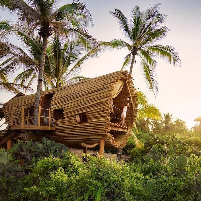 Необычный бамбуковый дом на дереве в Сиуатанехо, Мексика.