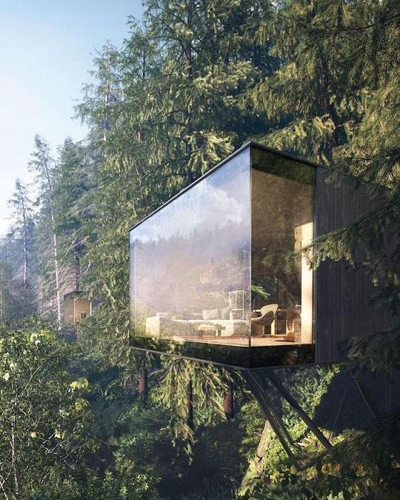Эксклюзивный лесной гостиничный комплекс в центре Баварского леса, Шварцвальд.
