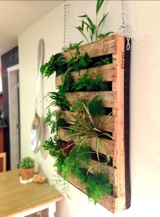 Эффектный вертикальный сад можно изготовить из обычного деревянного поддона.