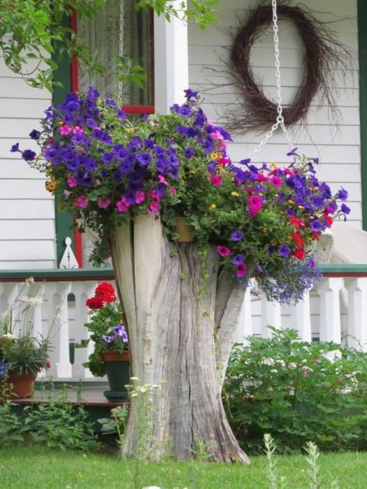 Старое дерево можно использовать как стойку для кашпо с цветущими растениями.