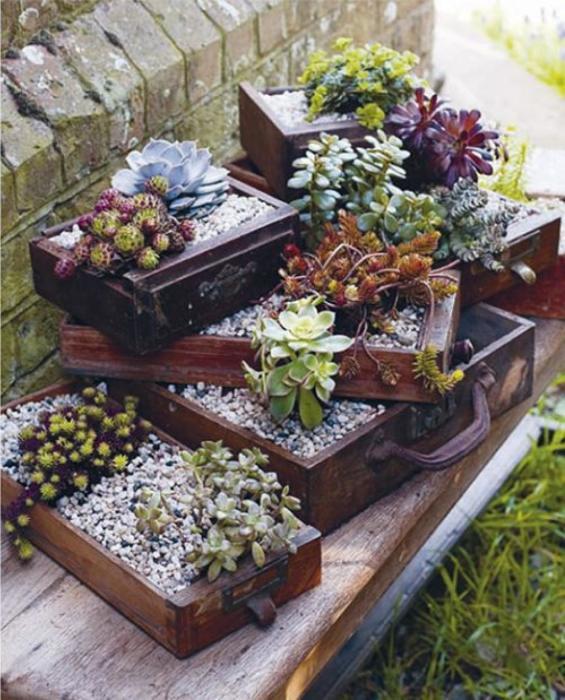 Деревянные ящички, которые можно использовать для выращивания растений как в доме, так и на дачном участке.