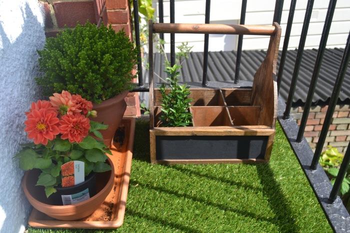 Самый простой ящик для инструментов может стать отличной подставкой для небольших растений.