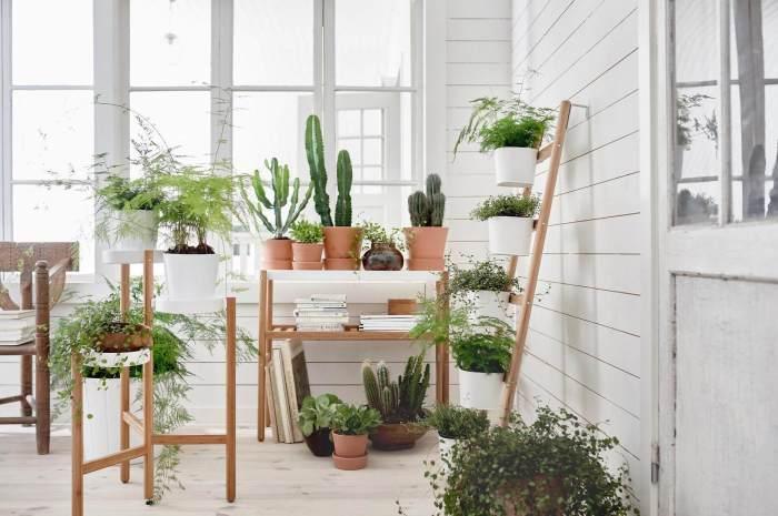 Сразу несколько практичных решений, которые помогут организовать пространство в маленьком зимнем саду.