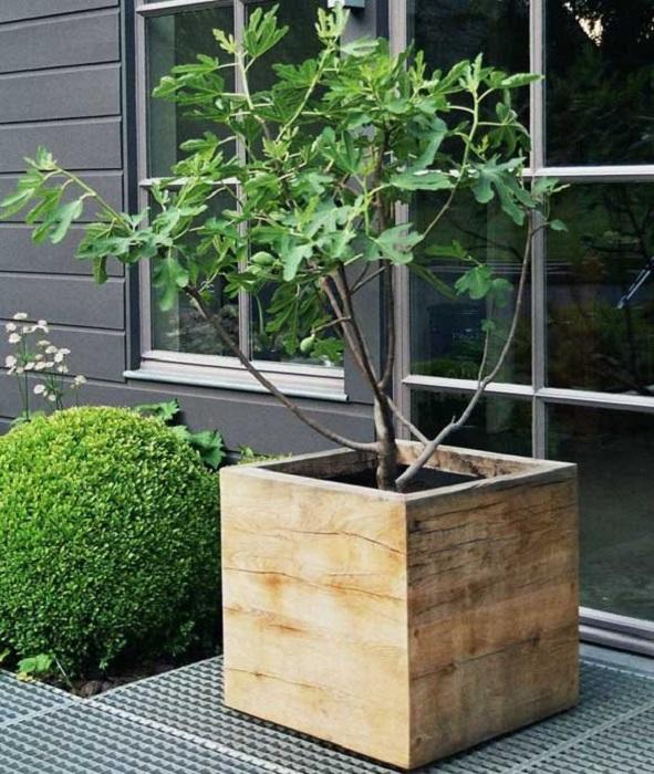 Большое деревянное кашпо, которое станет эффективным украшением на дачном участке.