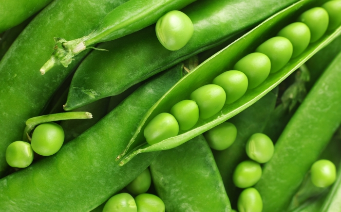 Свежий зеленый горошек, который обладает множеством полезных свойств.