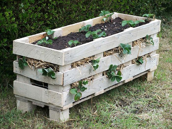 Если поставить в саду старые деревянные ящики и посадить в них цветы, твой участок сразу преобразится.
