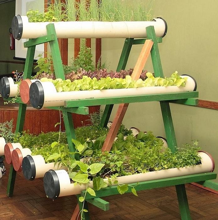Отличная идея для тех, кто не хочет тратиться на горшки для цветов и растений.