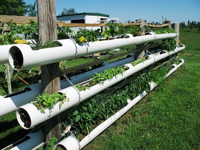 Создание огорода с помощью поделок из полихлорвиниловых труб – несложная задача, которая потребует весьма небольших вложений.