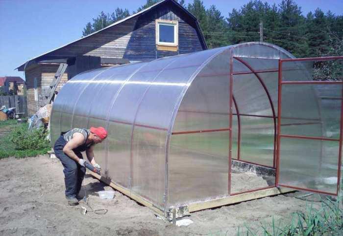 Большая и функциональная теплица, которую легко и недорого можно построить на дачном участке.