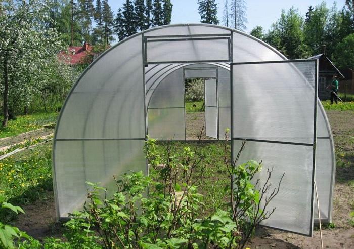 Теплица или парник является важной постройкой для каждого современного дачника, который хочет иметь хороший и обильный урожай круглый год.