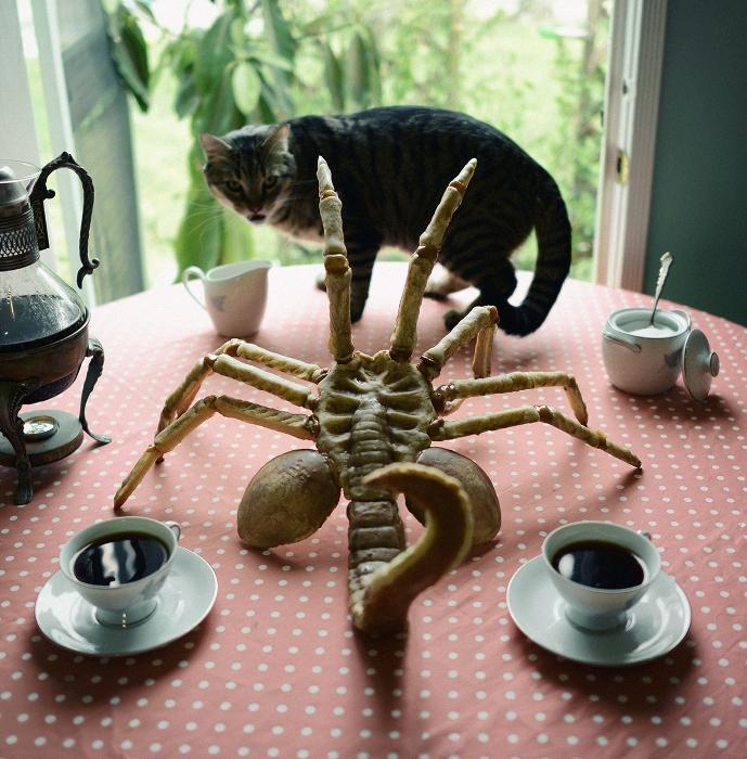Пирог-чужой хочет напасть на кошку.