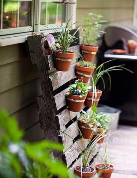 Великолепное решение для любителей растений.