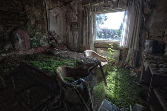 Все комнаты заброшенного в 90-х годах отеля на сегодняшний день полностью покрыты мхом.