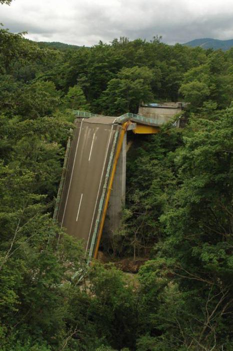 Разрушенный мост на фоне дикой природы.