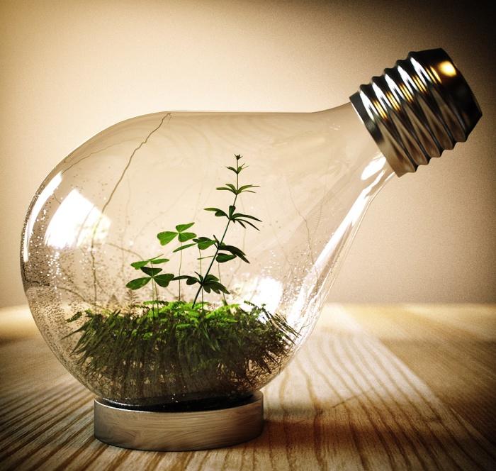 Террариум в лампе своими руками