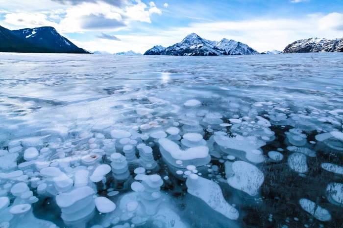 Замерзшие пузыри на поверхности озера.