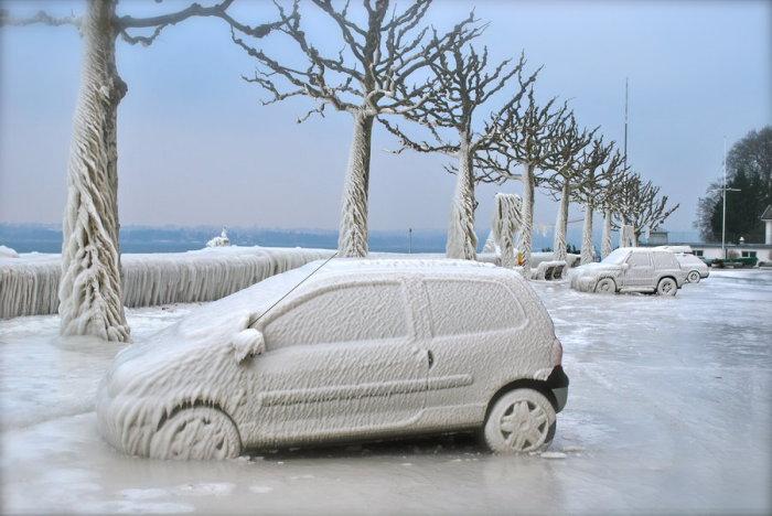 Проделки суровой зимы.