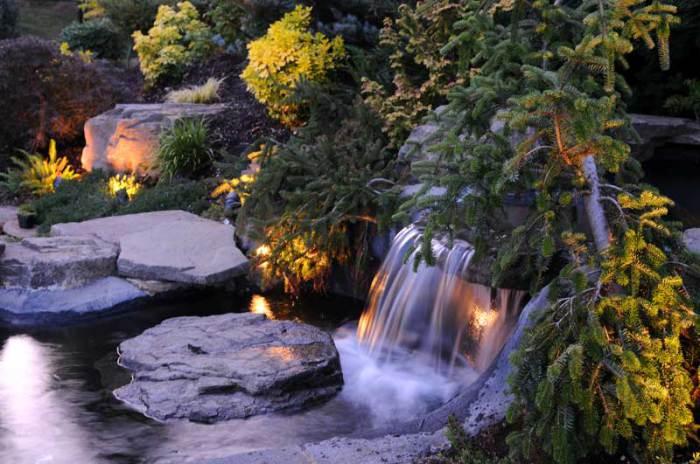 Великолепный пруд в саду.