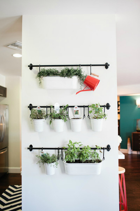 Достаточно простой, доступный и замечательный способ разбить сад в квартире.