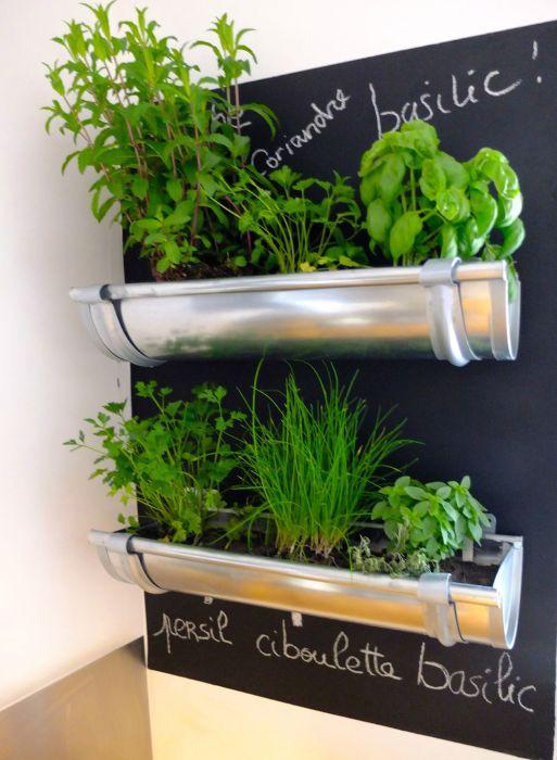 Замечательный способ повторно использовать старую водосточную трубу, посадив в нее растения.