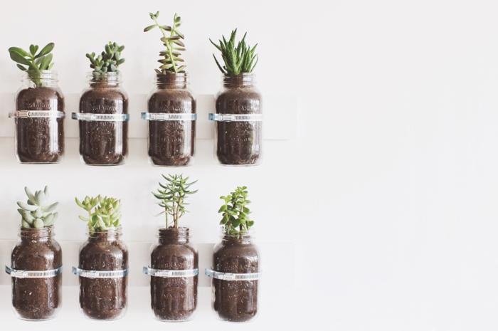 Оригинальный и простой способ основать сад в квартире.