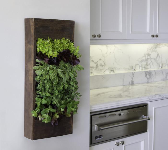 Настенный цветочный горшок, который выглядит очень современно и прекрасно дополняет интерьер кухни.