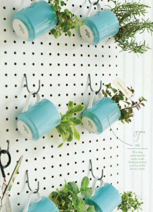 Чашки в качестве цветочных горшков - это оригинально и функционально.