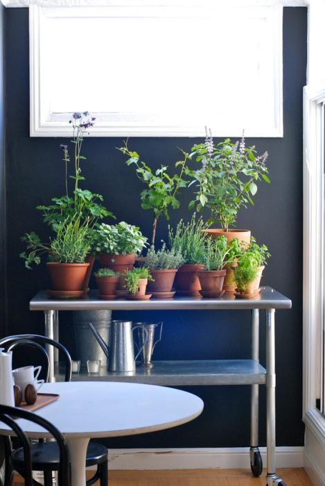 Прекрасный сад, который легко может менять свое местоположение.