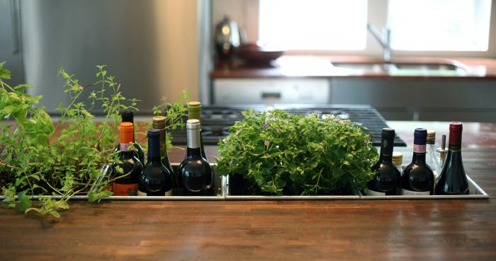 Полезный сад, в котором можно выращивать разнообразную мебель, необходимую для готовки блюд.